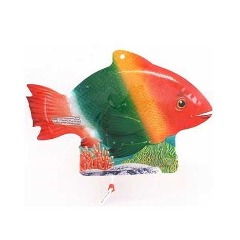 Solar Fish zwembadafdekking onzichtbaar